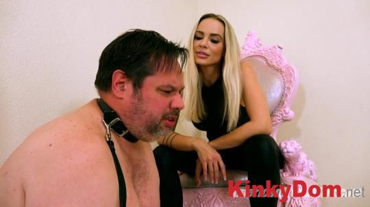 AmericanMeanGirls - You WILL Stand For Spiked Ballbusting   [1080p] (Femdom)