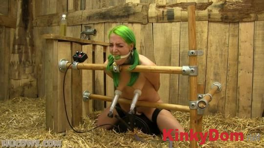 HuCows - Liz - Milked on the Sybian [1080p] (BDSM)